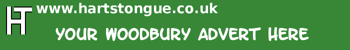Woodbury: Your Advert Here