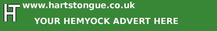 Hemyock: Your Advert Here