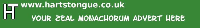 Zeal Monachorum: Your Advert Here