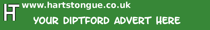 Diptford: Your Advert Here