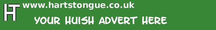 Huish: Your Advert Here