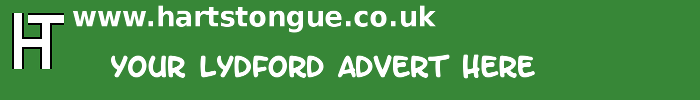 Lydford: Your Advert Here